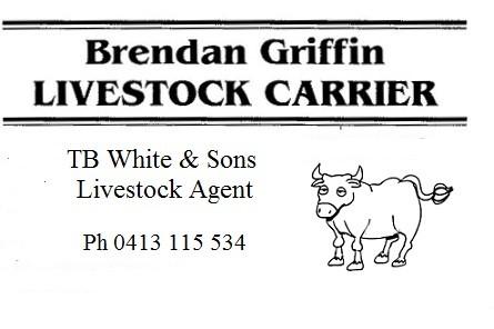 Brendan Griffin Livestock Carrier